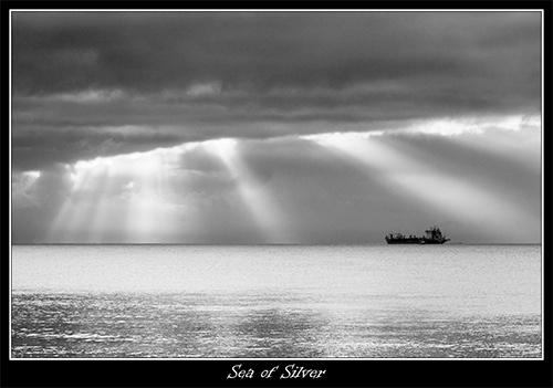 Sea of Silver by armamatt1