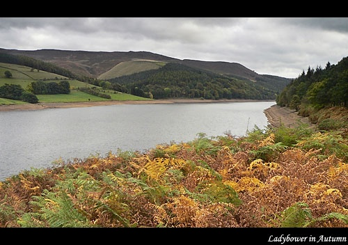 Ladybower in Autumn by mcc28_x