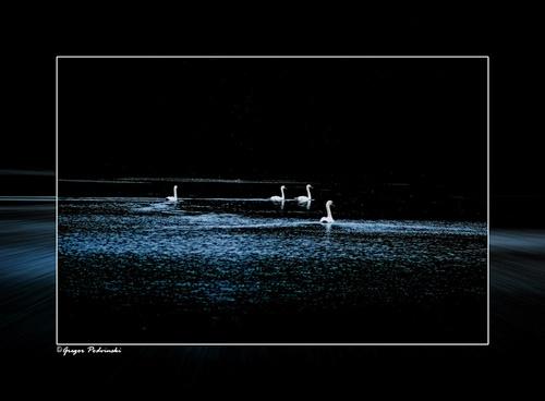 Midnight promenade by GregorP