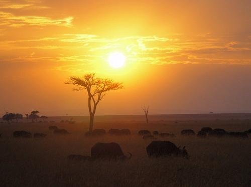 Mara Sunrise by X5DJM