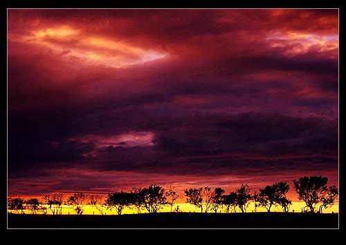 Under a blood red sky by Ewan