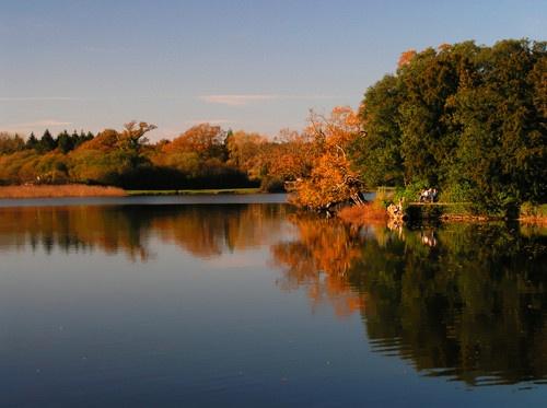 Autumn Reflections by peterhorner