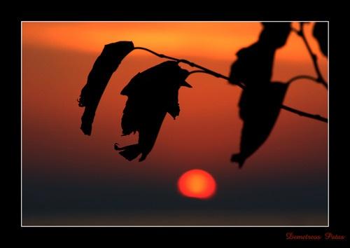 Sunfall by Demetreos