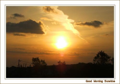 Good Morning Sunshine by jonhayward