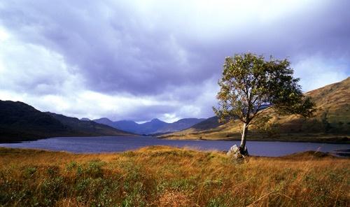 Loch Arklet by stevemelvin