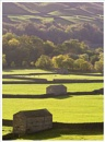 Swaledale Yorkshire by Brownie127