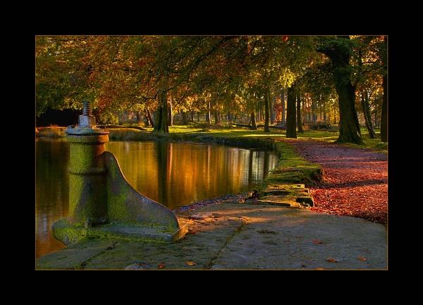 Autumn Light by cdm36