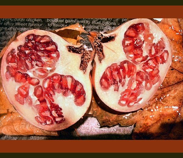 Pomegranate by Lou41