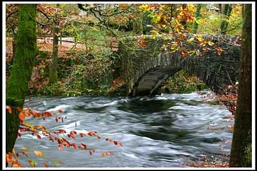 water under the bridge by davek