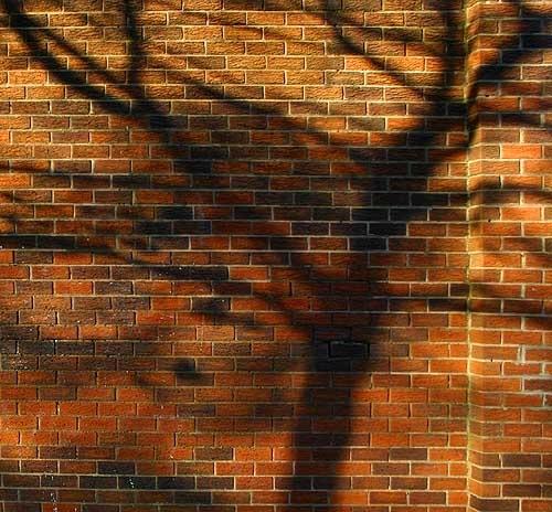 Red Brick Shadow by ericfaragh