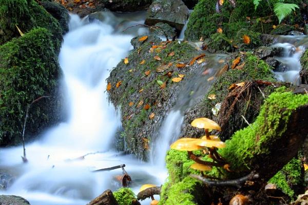 canonteign falls by petegaylard