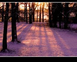 Snow Shadow 1a