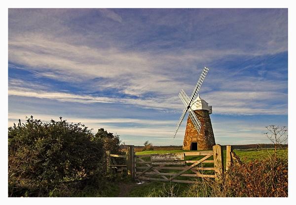Halnaker Windmill by Carol_f