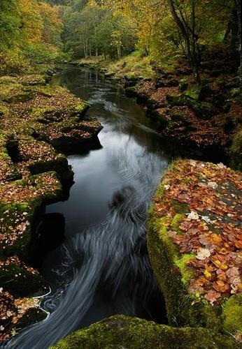 Still Waters by walterL