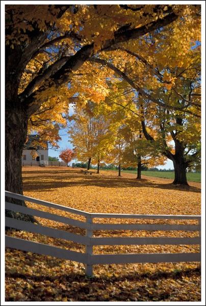 New England by AlanTW