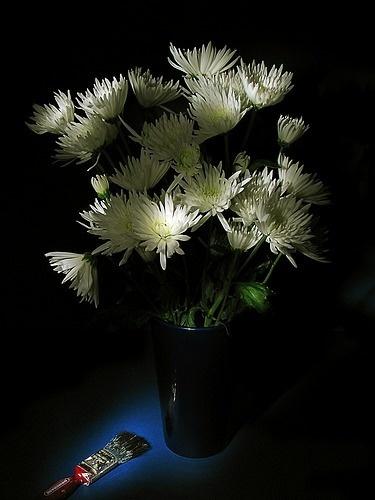 White Flowers by RichardB
