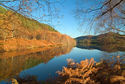 Glen Affric autumn by Snapper