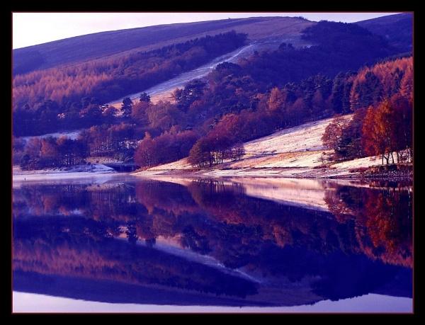 errwood reflection by sunshot
