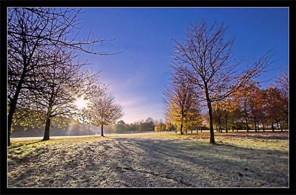 November morning by Carol_f