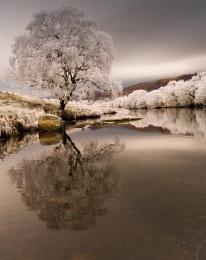 East of Loch Lomond