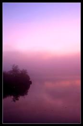 Purple Haze II