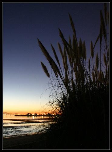 Alameda  Sunset by liparig