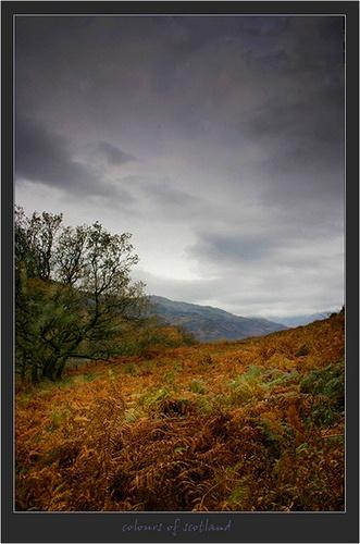 The Colours of Scotland by SuziBlue