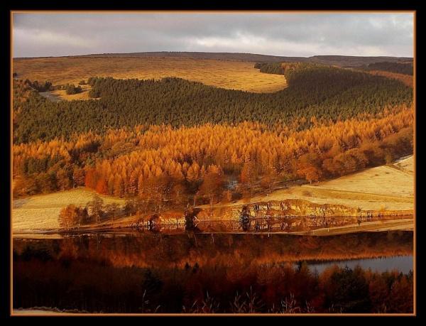 autumn reflections. by sunshot
