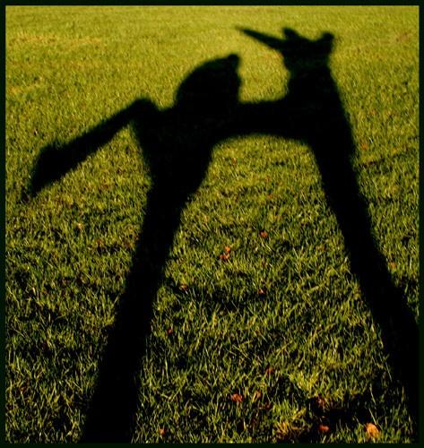 shadows by Sarahmann