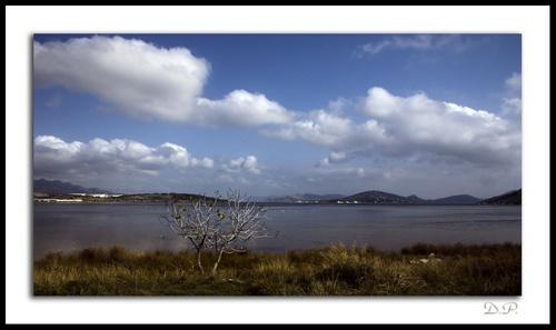 Landscape by Demetreos