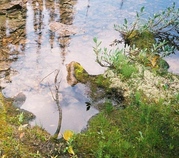 Emerald Lake 3 by GavMc