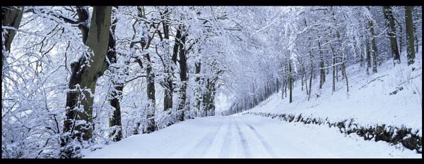 Winter Road, Ceres, Fife by Camairish