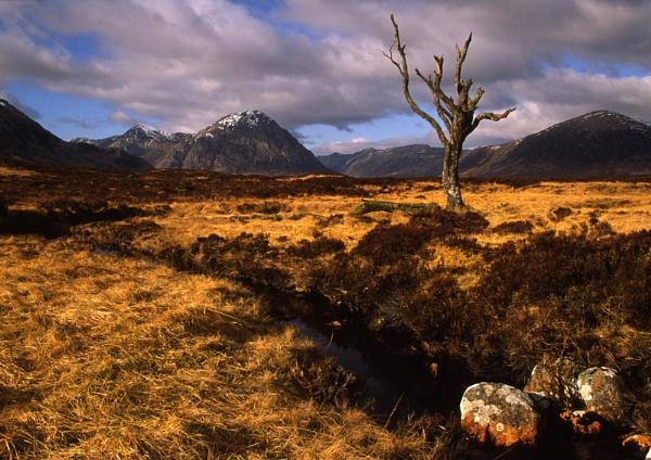 Rannoch Moor by Camairish