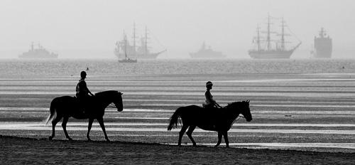 Horses on the Beach by gmuncaster