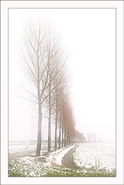 Slightly Snowy by conrad