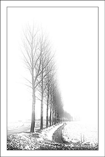 Slightly Snowy 2 by conrad