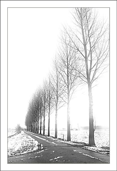 Slightly Snowy 3 by conrad