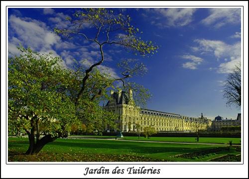 Jardin des Tuileries by Hedgehog