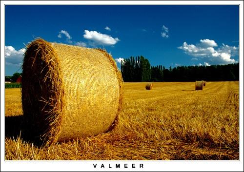 Valmeer by Hedgehog