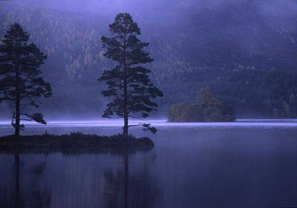 Loch An Eilein by Camairish