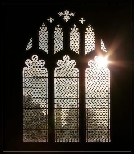 Shining Through.... by gemm