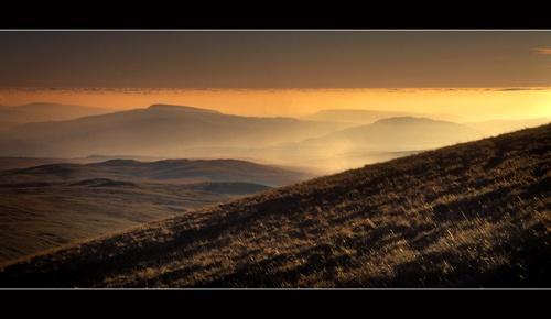 Golden haze by jond