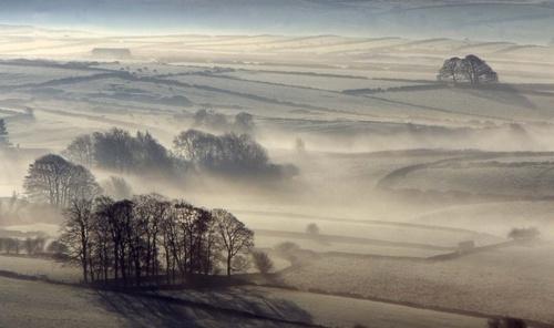 misty November by Falconer