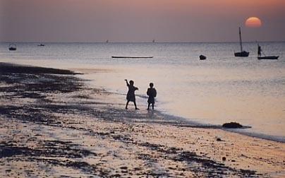 zanzibar shoreline by Annandale