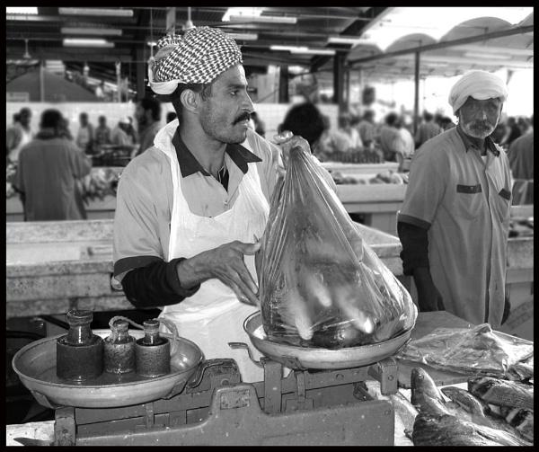 Fishmarket Fellow 2 by GavMc