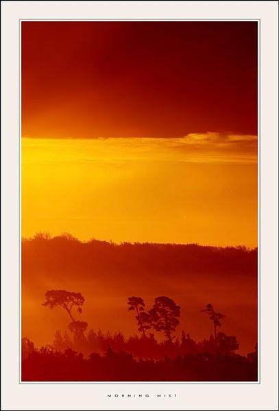 Morning Mist by den2il