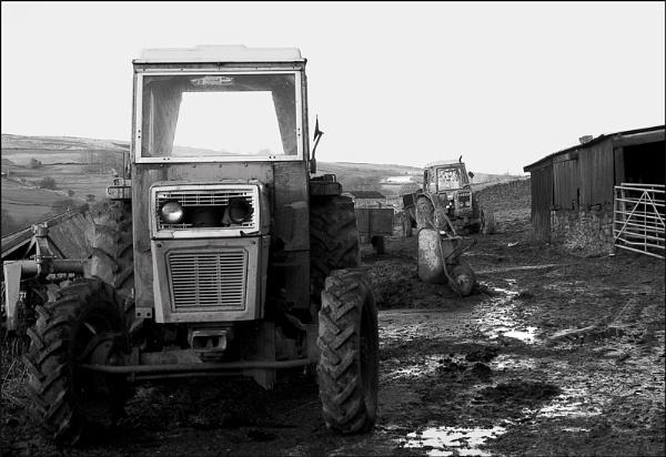 farm 1 by christabella