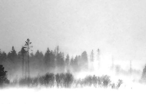 Blustery Day by sputnki