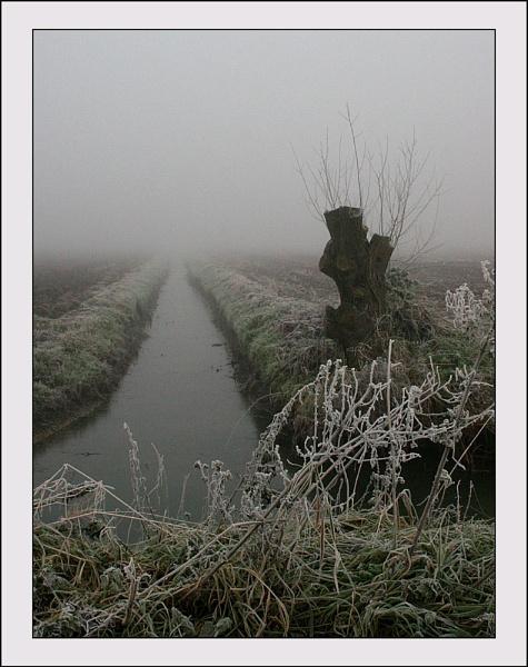 Fog 3 by conrad