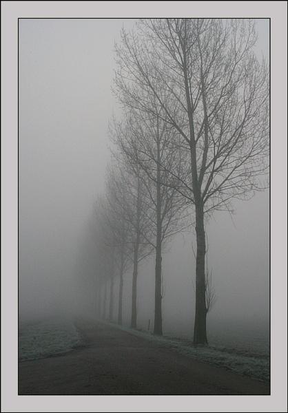 Fog 4 by conrad